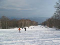tsugaike-hannoki2006-2007.jpg